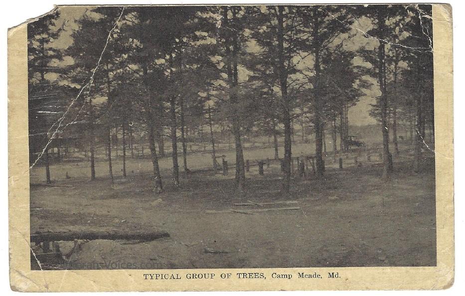 Camp Meade 1919