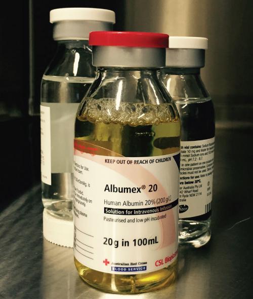 Bovine Serum Albumin Room Temperature