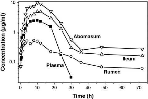 Graph shows time in hours from 0 to 70 versus concentration in microgram/milliliter from 0.1 to 10 with plots for abomasum, ileum, rumen, and plasma.