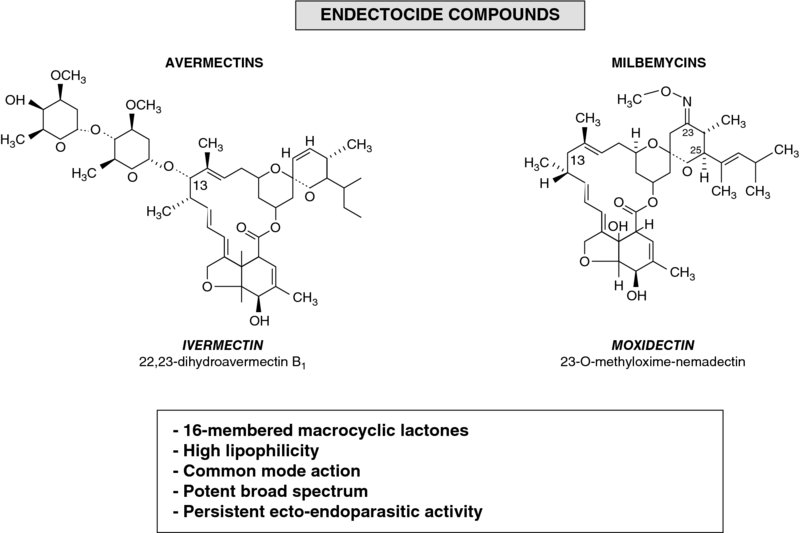 Diagram shows chemical structures with labels for avermectins (ivermectin) and milbemycins (moxidectin).