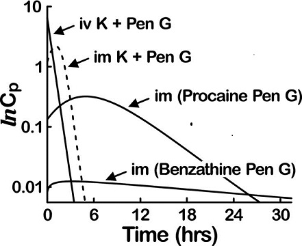Graph shows time in hours from 0 to 30 versus lnCp from 0.01 to 10 with plots for iv K plus pen G, im K plus pen G, im (procaine pen G), and im (benzathine pen G).