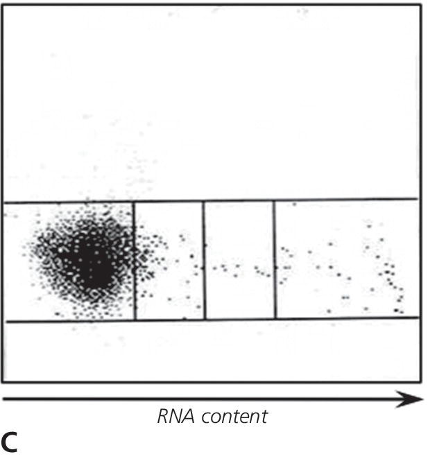 Schematic graph of analysis of erythrocytes for RNA content versus cell size indicating very few (0.4%) reticulocytes, consistent with a poorly regenerative anemia.