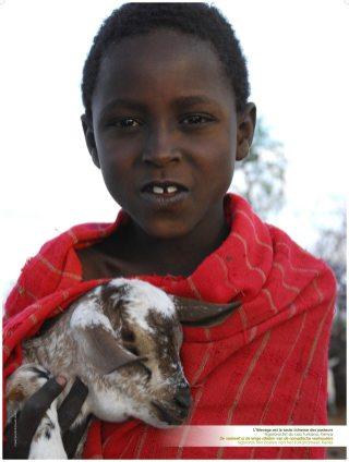 Exposition photo sur l'élevage et le climat, Vétérinaires Sans Frontières