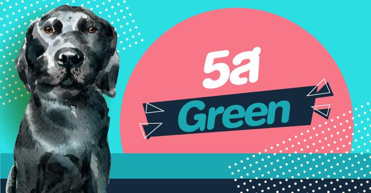 5ส Green