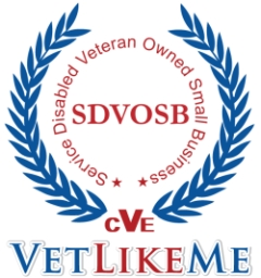 VLM logo1