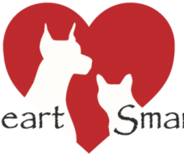 Diet For Pets With Heart Disease