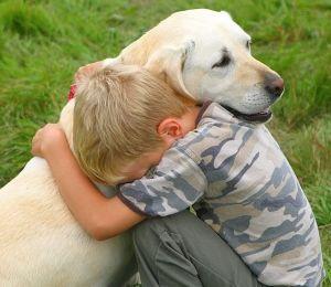 Перелом позвоночника у собаки прогноз
