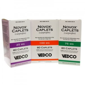 Novox Pain Reliever for Arthritis in Dogs