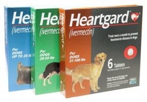 Unflavored Heartworm Prevention Heartgard Tablets is back in stock.