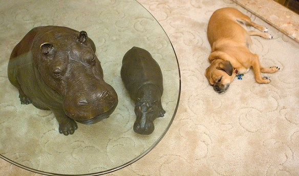 Dog with Hippo Statue
