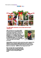 VMF December Newsletter
