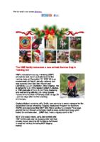 VMF December Newsletter