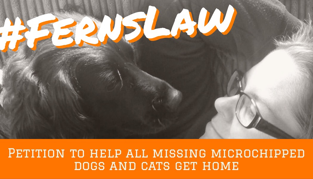 #FernsLaw the petition to get missing microchipped dogs and cats back home –  where they belong