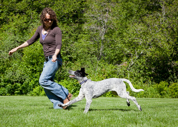 9 Fun Games to Play with Your Dog