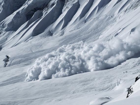 1508544-img-lavina