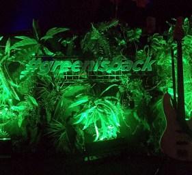 Greenisback-5_