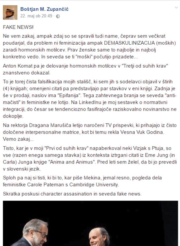 BMZ Fake news fb in