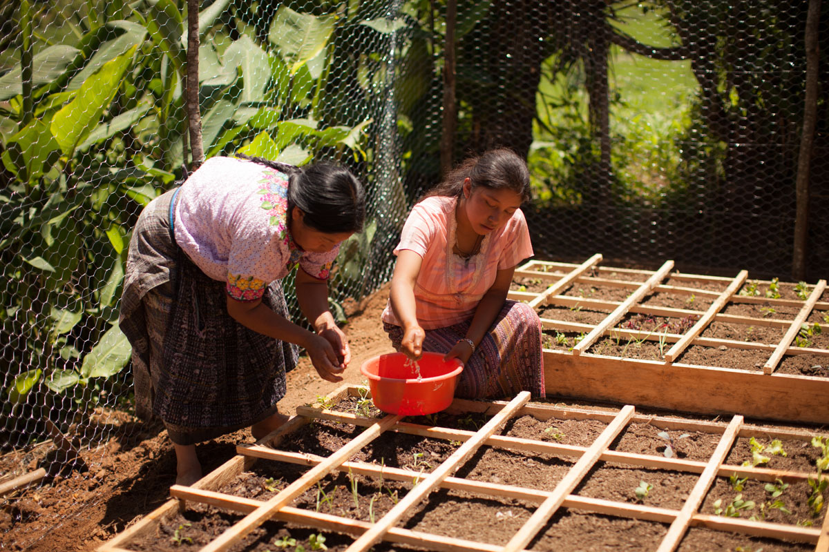 Sololá, Guatemala – Square Foot Gardening with Cultiva International