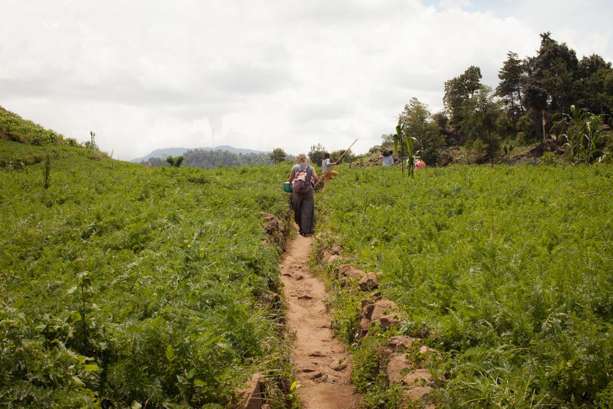 Solola, Guatemala - Square Foot Gardening