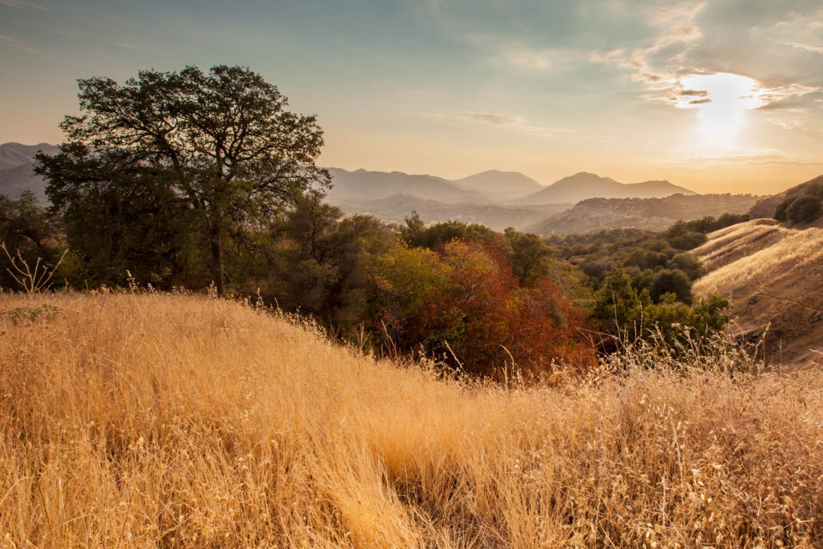 Sunset just outside of King's Canyon National Park, California #vezzaniphotography