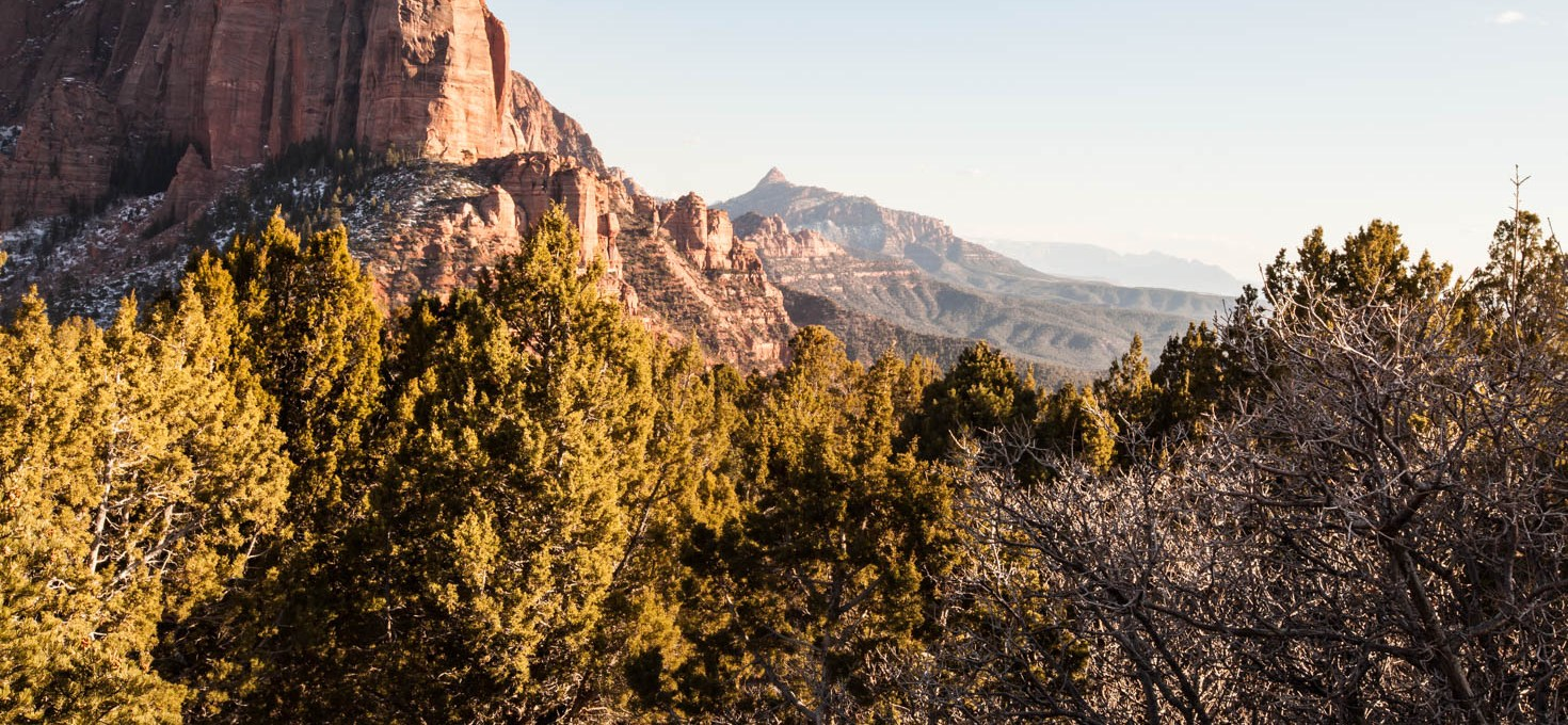 4 Reasons why Kolob Canyon at Zion National Park is worth a visit