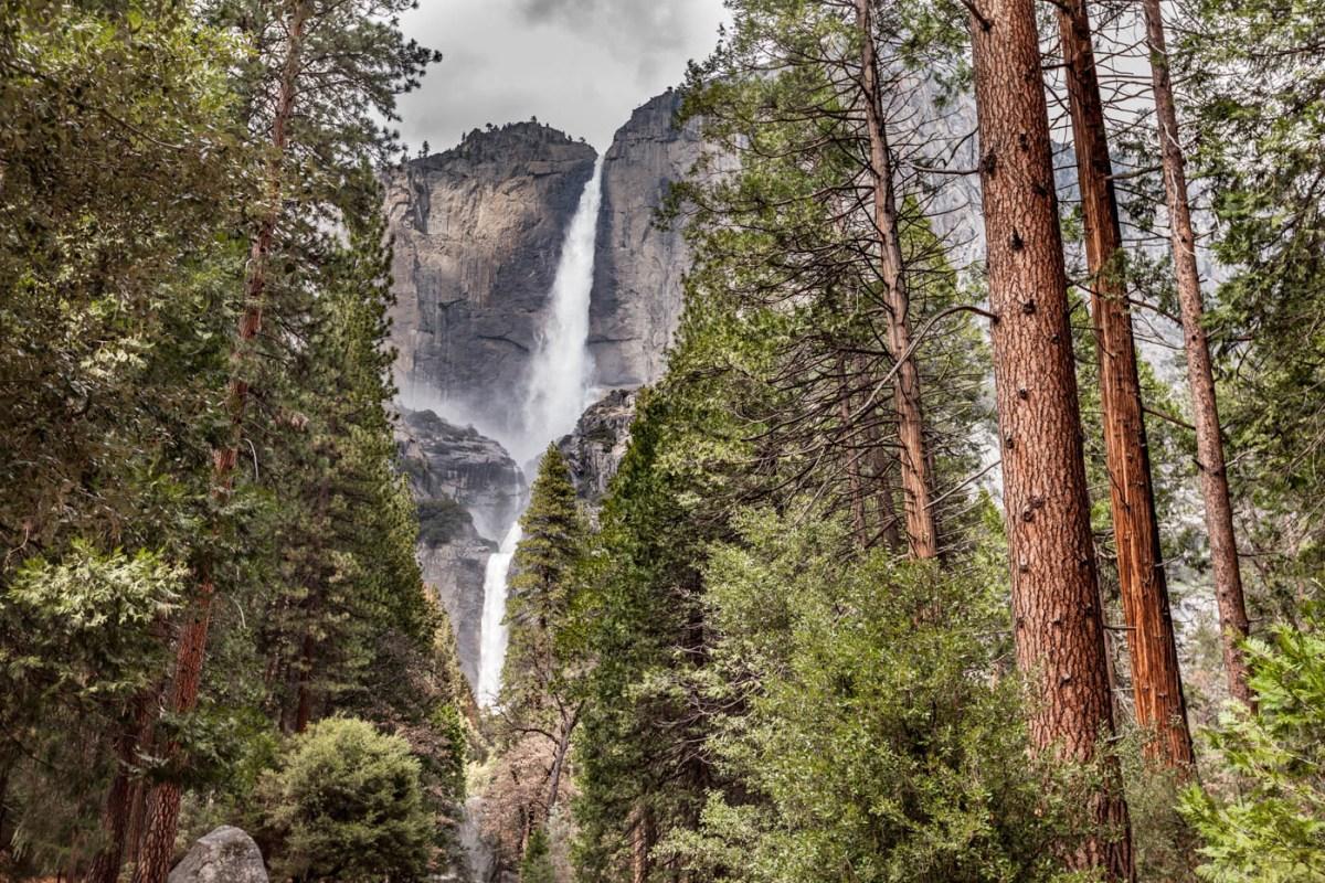 Lower Yosemite Fall - My Favorite Hike at Yosemite National Park - Best Photo Spots Yosemite National Park #vezzaniphotography