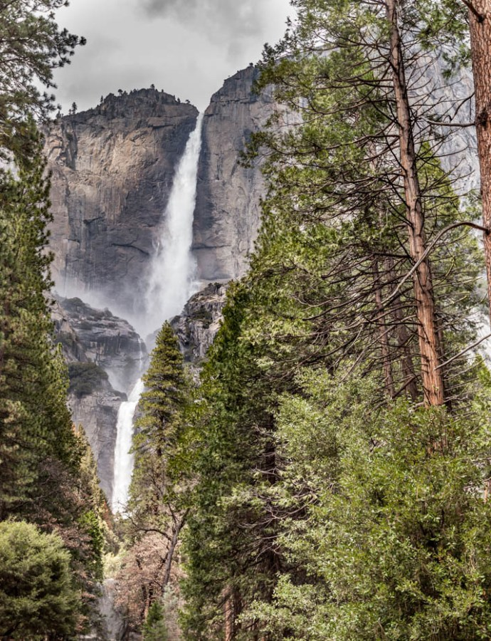 Lower Yosemite Fall – Why It's My Favorite Hike at Yosemite National Park