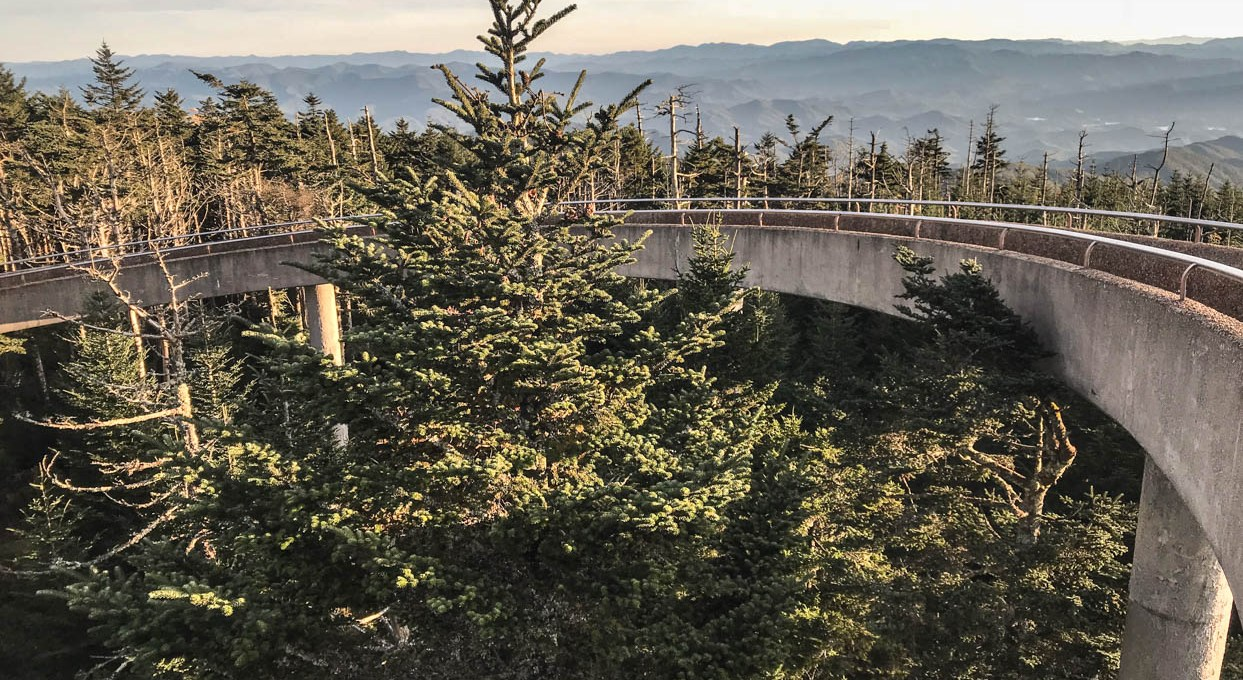 Hiking the Clingmans Dome Observation Tower in the Smoky Mountains