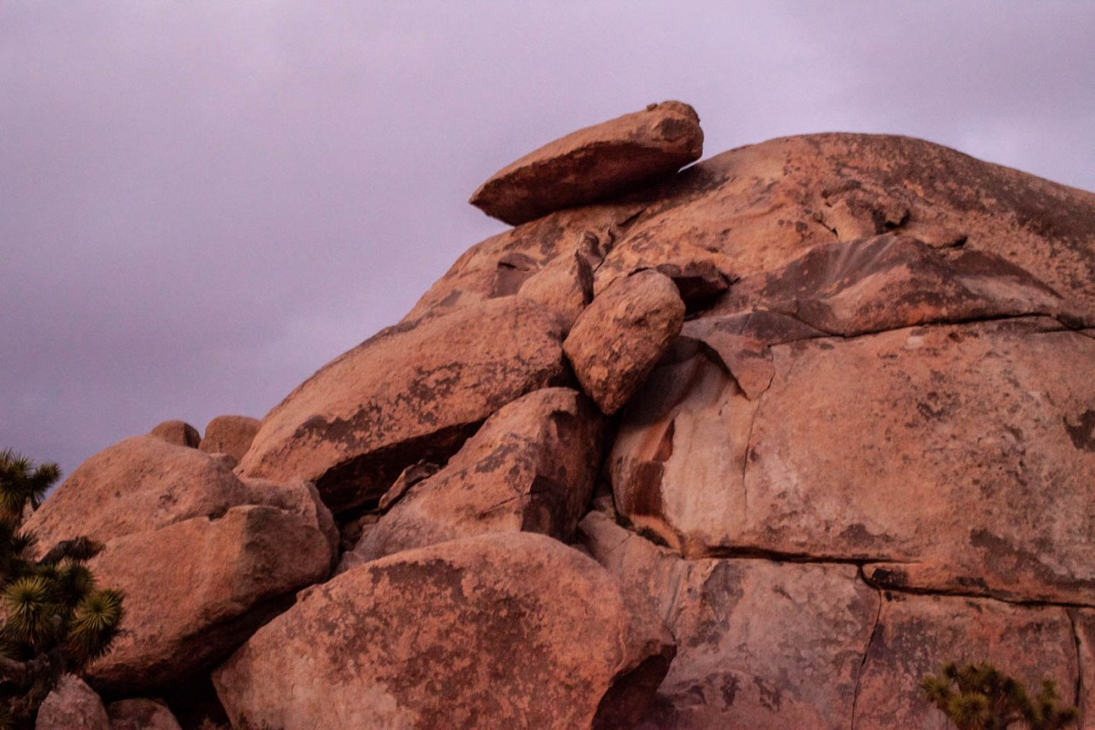 9 Must-see Locations at Joshua Tree National Park - Cap Rock #vezzaniphotography