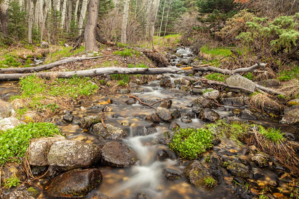 Baker Creek and Timber Creek Hiking Trail at Great Basin National Park #vezzaniphotography