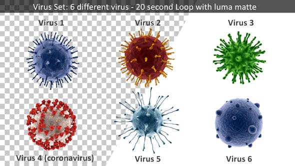 Virus Set 4k – 6 Different Viruses