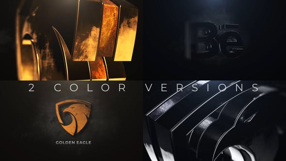 Gold And Silver Logo Reveal