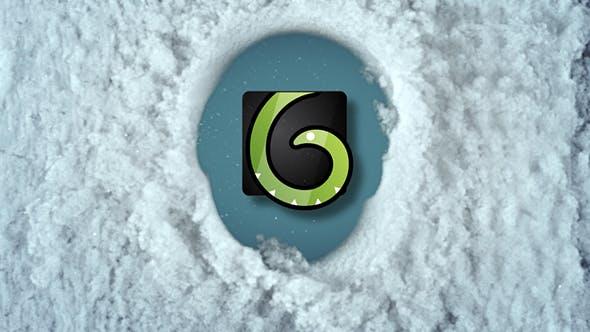 Snow Reveal Logos
