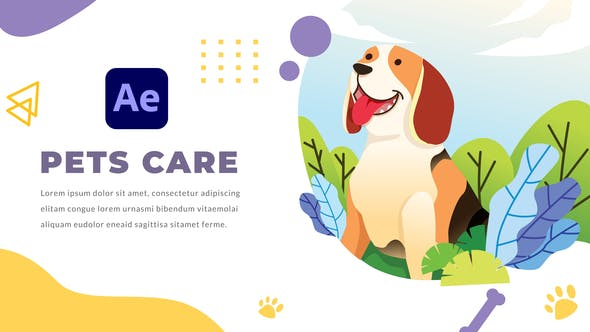 Pets Care and Veterinarian | After Effects