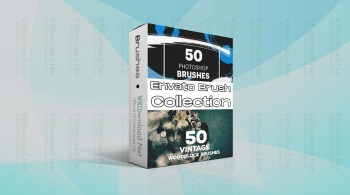Envato Brush Collection Jan 2021