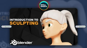 Introduction To Blender Sculpting By Zerina Bandzovic