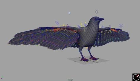 Bird_002