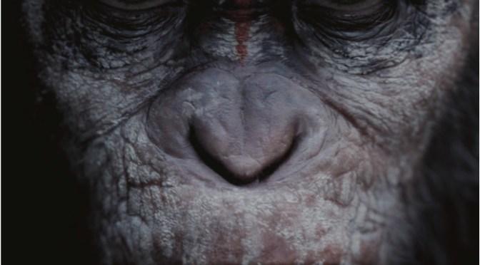 [Review] El Planeta de los Simios: Confrontación