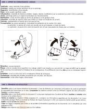 S-Santesport-artic-TDavril17-B-aides1