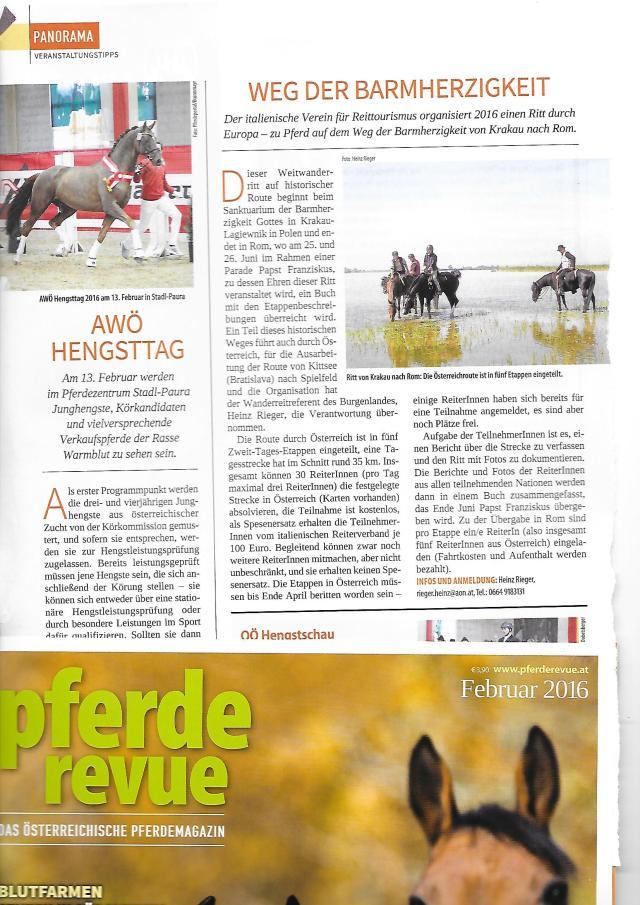 Scan Pferde revue Bericht