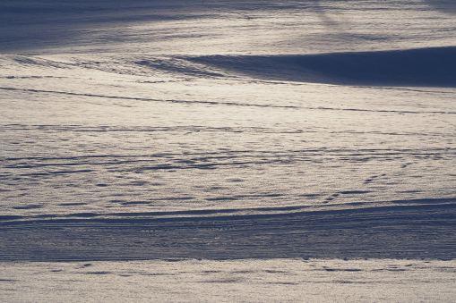 Snow winter Aeschi 2016