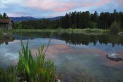 Pond in magic evening light