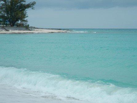Shell Beach Bimini