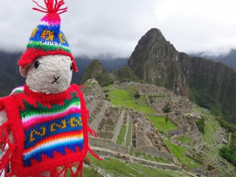 O famoso Kiki no Machu Picchu