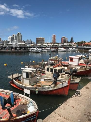 PuntadelEste-Puerto