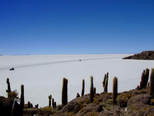 Salar do Uyuni vista da Isla del Pescado (foto: Eduardo Vessoni)