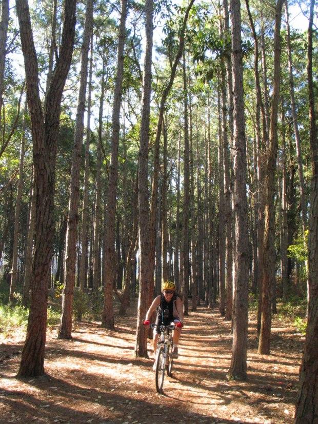 O Parque Estadual do Rio Vermelho é uma das paradas do tour de 4 dias de bicicleta, em Florianópolis, em Santa Catarina (foto: Caminhos do Sertão/Divulgação)