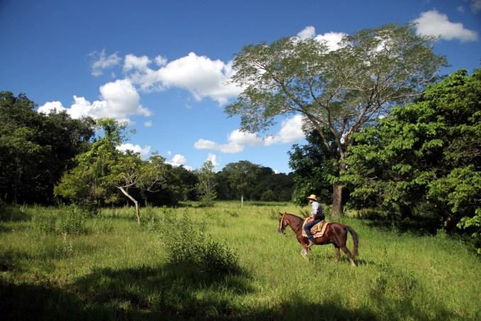 Fazenda Mimosa (foto: Eduardo Vessoni)