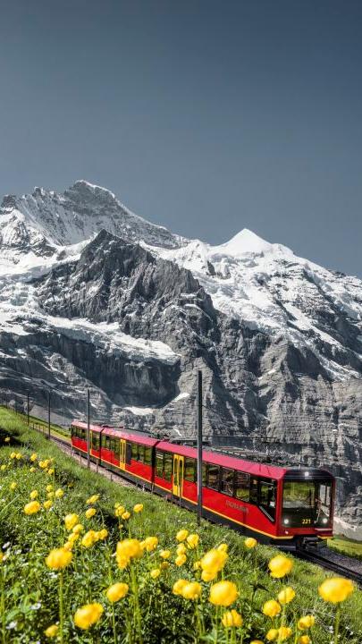 Procura por voos para a Suíça têm aumento de 146%