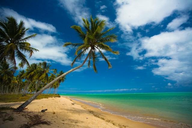 """Praia do Patacho. Na maré baixa é possível caminhar quilômetros """"mar"""" adentro e curtir as piscinas naturais que se formam"""